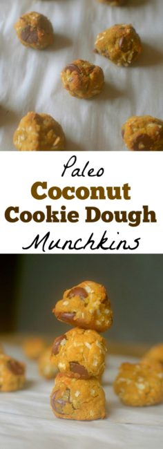 Satisfy your cookie dough and donut cravings in one w/ these Paleo Coconut Cookie Dough Munchkins! Made with coconut flour and other nourishing ingredients!