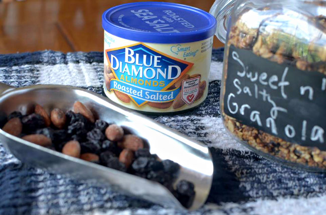A healthy breakfast granola that combines the sweet flavor of blueberries with the salty flavor of almonds! You will love this Blueberry Almond Granola!
