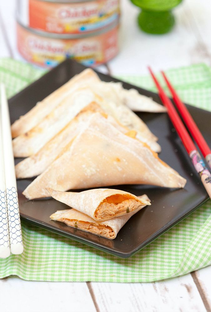 spicy-salmon-rangoons-1023